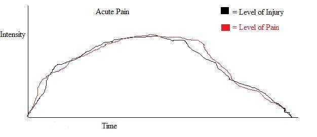 acute pain graph