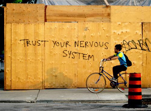 trust your nervous system