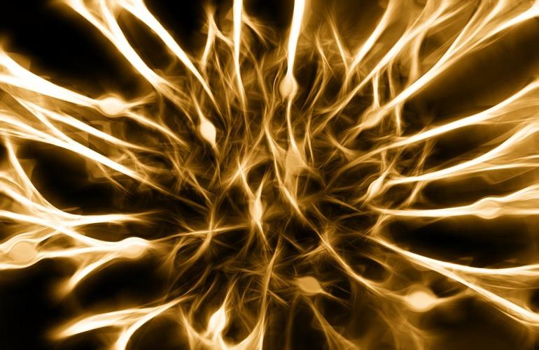 nerves-346928_1280